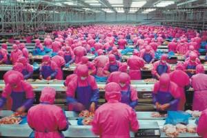 samsara-chicken-factory-300x200