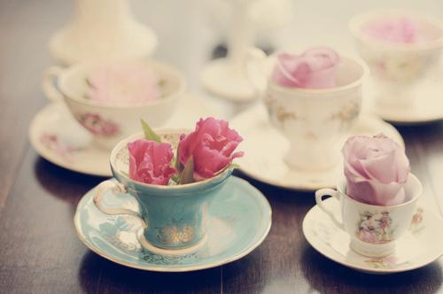 floral-flower-pastel-rose-roses-Favim.com-441031_original